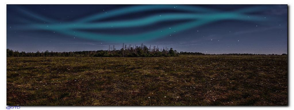 Harzer Hochmoor bei Nacht